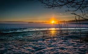 Picture cold, ice, winter, grass, the sun, snow, sunset, lake, dry
