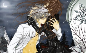 Picture snow, night, the wind, the moon, hugs, plate, vampire knight, yuuki cross, kiryu zero, knight-vampire
