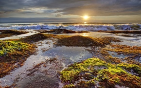 Picture sea, the sky, clouds, algae, sunset, stones, wave