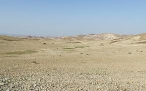 Picture CAMEL, ISRAEL, JUDEAN DESERT