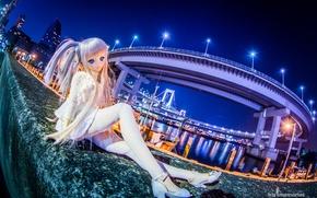 Picture toy, doll, bridges, night city, promenade