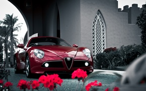 Picture alfa romeo, flowers, competition