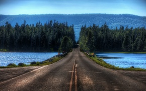 Picture road, lake, Forest, crossing, blur