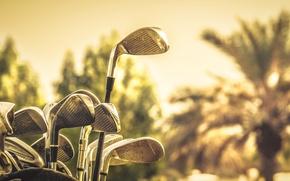 Picture macro, sport, Golf sticks