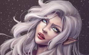Picture eyes, look, girl, face, hair, elf, art, lips, white, ears, ears