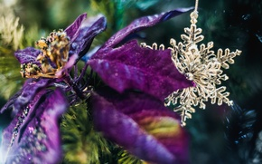 Picture flower, decoration, tree, New Year, bokeh