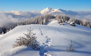 Picture Nature, Home, Winter, Mountains, Snow, Forest, Landscape