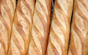 Picture bread, bread, baguette