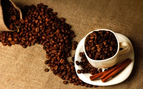 Picture coffee, grain, sticks, Cup, white, cinnamon, bag, saucer