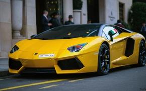 Picture Lamborghini, V12, Yellow, Aventador, Supercar
