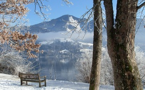 Picture winter, trees, bench, river