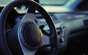 Picture the wheel, Mitsubishi, salon, Gorelov
