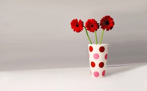 Picture mood, mood, gerbera, mug polka dot, flowers in a glass