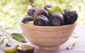 Wallpaper fruit, plum, prunes, plum