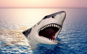 Picture sea, the sky, jaw, shark, teeth, horizon, mouth