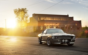Picture the sun, the building, Ford, Shelby, silver, Eleanor, GT 500, muscle car, Ford, Blik, Shelby, …