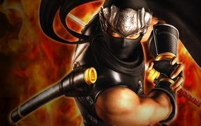 Picture sword, Ninja Gaiden, Ryu Hayabusa