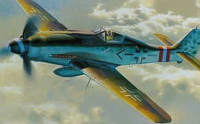 Picture aircraft, war, airplane, aviation, dogfight, fw 190. german fighter