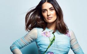 Picture face, woman, beauty, actress, beauty, Salma Hayek