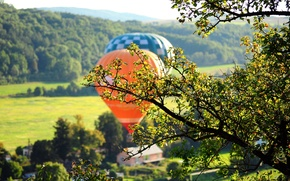 Picture greens, leaves, trees, nature, balloon, background, tree, foliage, meadow, widescreen, full screen, HD wallpapers, widescreen