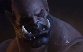 Picture face, World of Warcraft, Orc, wow, Garrosh Hellscream, Warlords of Draenor