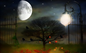 Picture night, style, background, the moon