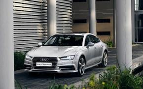 Picture 2015, quattro, ZA-spec, S line, TDI, Audi, Audi, Sportback