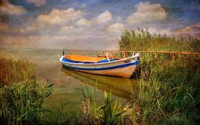 Picture water, nature, boat, plant, Spain, canvas, Valencia, Albufera Natural Park