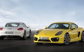 Picture Porsche, Cayman, sportcar, auto, yellow, porsche wallpaper, cayman s