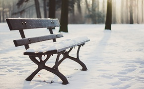 Picture wood, winter, snow, seat, bench, shadows, sunlight, wooland