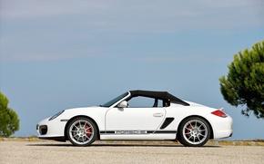 Wallpaper Porsche, 2010, Boxster, Spyder