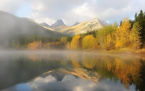 Picture autumn, forest, trees, mountains, nature, lake, morning, haze