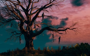 Picture The Witcher, the gallows tree, The Witcher 3:Wild Hunt
