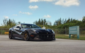 Picture Ferrari, F12, MV2, ADV05