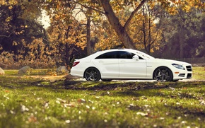 Picture nature, tuning, Mercedes, Mercedes Benz CLS