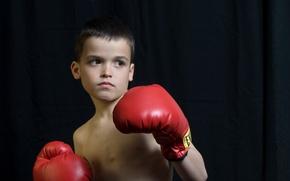 Wallpaper look, boy, gloves, boxer