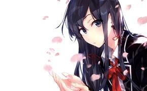 Picture girl, flowers, anime, art, form, schoolgirl, yukinoshita was load, yahari ore no seishun love come …