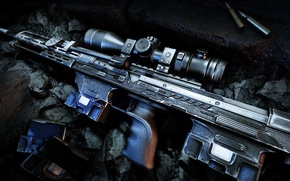 Picture weapons, guns, cartridges, sniper rifle, Sniper Ghost Warrior 2, DSR-50
