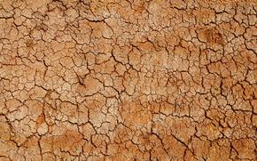 Picture desert, texture, crack, cork, clay