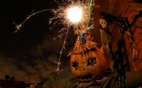 Picture halloween, holiday, pumpkin