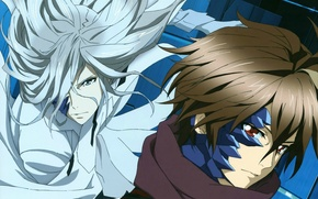 Picture virus, white hair, guilty crown, guilty crown, shu ouma, gai tsutsugami, Apocalypse