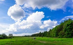 Picture road, field, machine, forest, summer, the sky, grass, landscape, nature, Ichalki