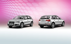 Picture style, New, crossover, Audi Q5