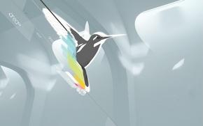Wallpaper minimalism, vector, Bird, Hummingbird