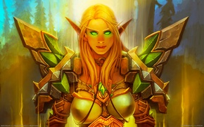 Picture armor, green eyes, paladin, world of warcraft, blood elf, blizzard entertainment, bloody elf, paladin