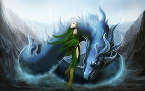 Picture dragon, anime, final fantasy