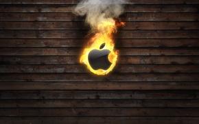 Picture fire, Apple, Apple, burns