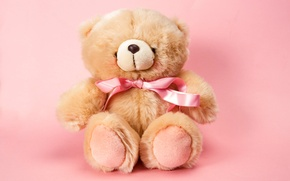 Picture toy, bear, plush, toy, bear, pink, cute, Teddy