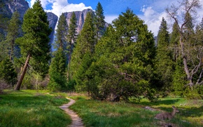 Picture greens, forest, grass, trees, mountains, rocks, glade, waterfall, CA, USA, path, Yosemite national Park, Yosemite ...
