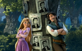 Picture forest, hair, Rapunzel, Princess, the robber, ads, Tangled, Complicated story, Flynn, Rapunzel, Flynn, the movie, …